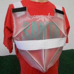 Chillin' Santa - Cooling Vest